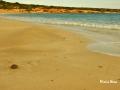 Fanos Beach - Koufonissia